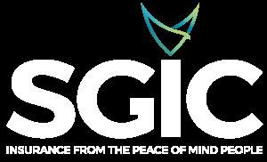 SGINS Logo